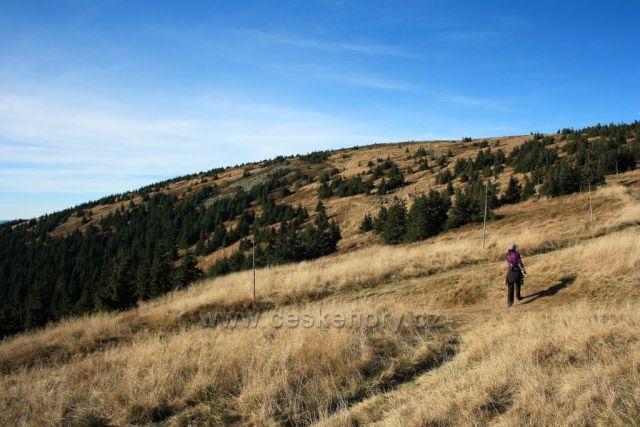 Na vrchol Kralického Sněžníku kolem pramene Moravy