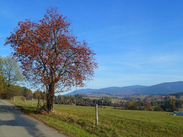 Habartice - pohled ze silničky do Vikantic k Šeráku