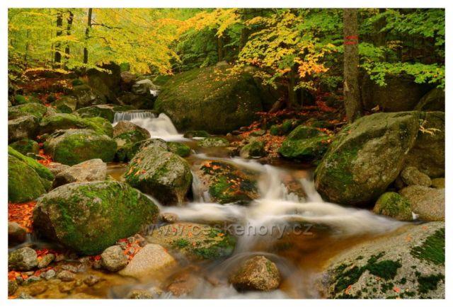 Radostný podzim na Černém potoce