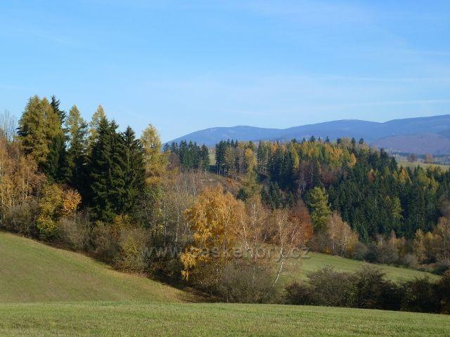 Habartice - pohled ze silničky do Vikantic k Jeseníkům