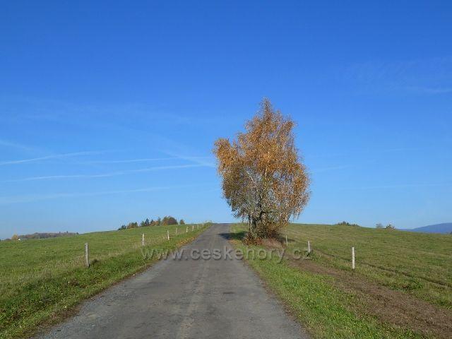 Habartice - silnička do Hanušovic