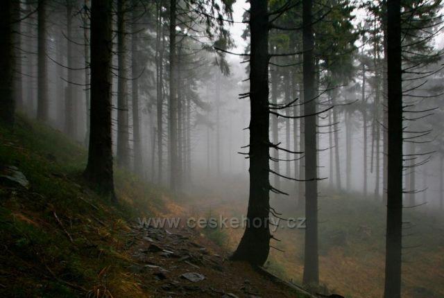 hranice mlhoviny