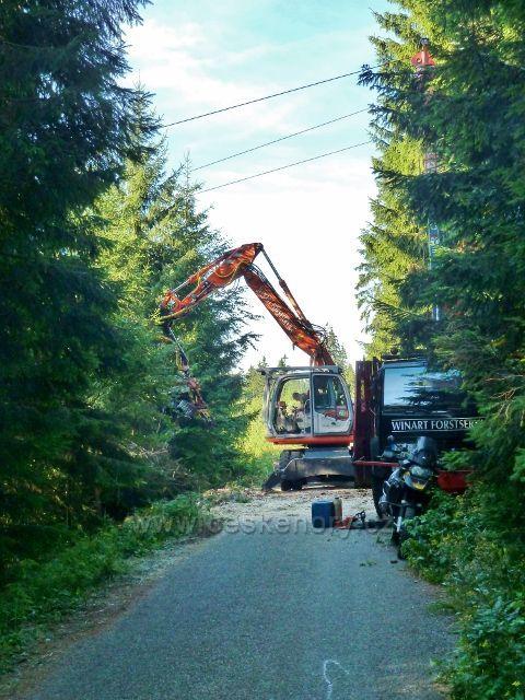 Dolní Morava - přibližování kalamitního dřeva lanovkou k vrstevnicové cestě v lokalitě Nad Sršňovkou