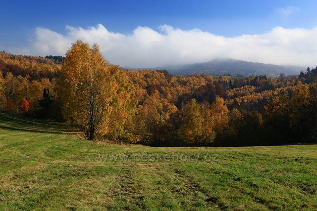 Podzimní louky nad Krásným Lesem