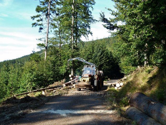 Dolní Morava - manipulace a přibližování kalamitního dřeva na vrstevnicové cestě po žluté TZ vedoucí ke Zbojnické chatě