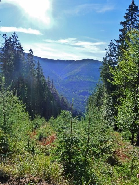 Dolní Morava - průhled na vrchol Slamníku a do údolí Kamenitého potoka