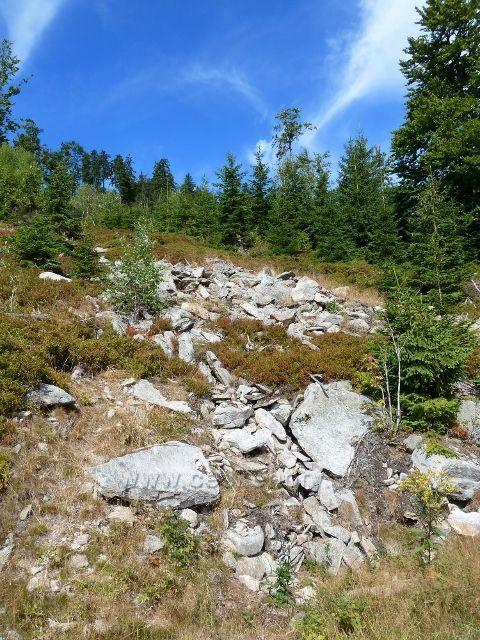 Dplní Morava - suťové pole na úbočí Klepáče