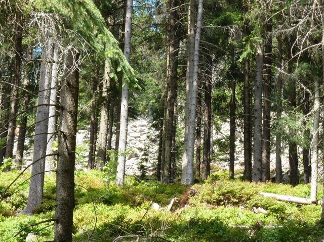 Dolní Morava - suťové pole pod vrcholem Klepáče