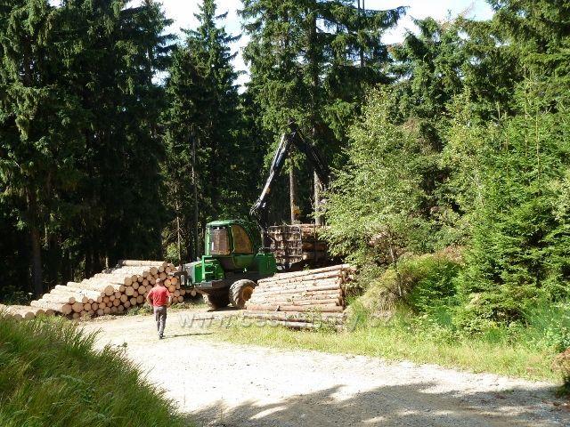Dolní Morava - odvoz kalamitního dřeva ze skládky na rozcestí Nad pramenem Lipkovského potoka