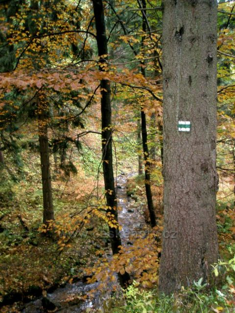 Cesta z Ručiček do Harrachova
