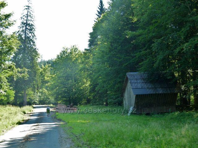 Branná - krmelec u silničky v údolí Klepáčského potoka