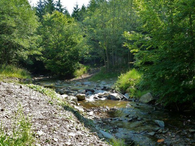 Branná - brod přes Klepáčský potok slouží k přibližování dřeva