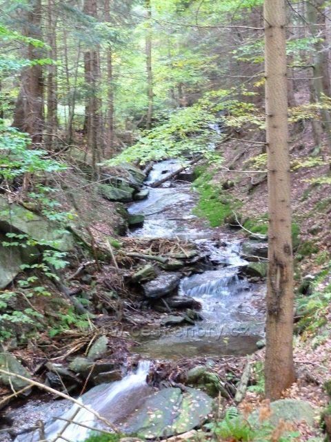 Branná - horní tok Jeleního potoka