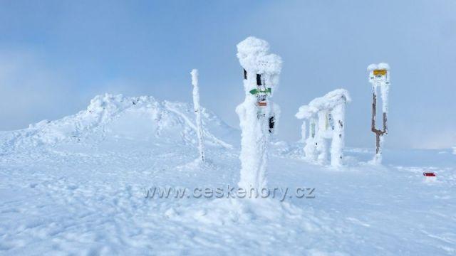 Králický Sněžník - vrchol