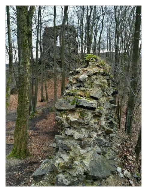 Zřícenina hradu Hamrštejn