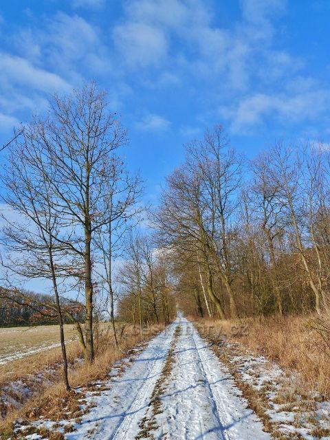 Žamberk - park, cesta pod starým sadem