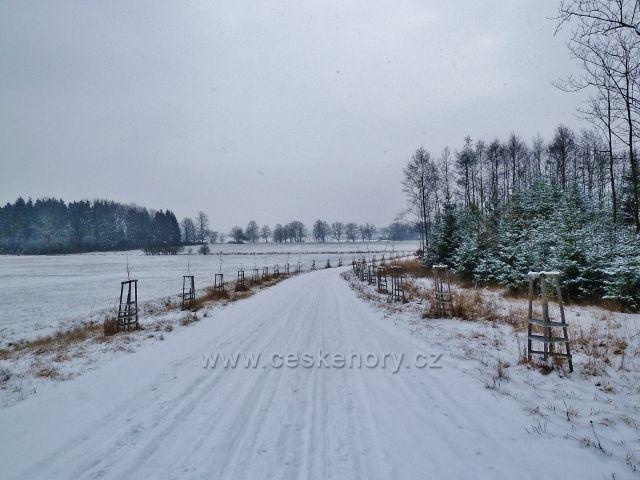 Žamberk - park, zimní silnička k Lukavici