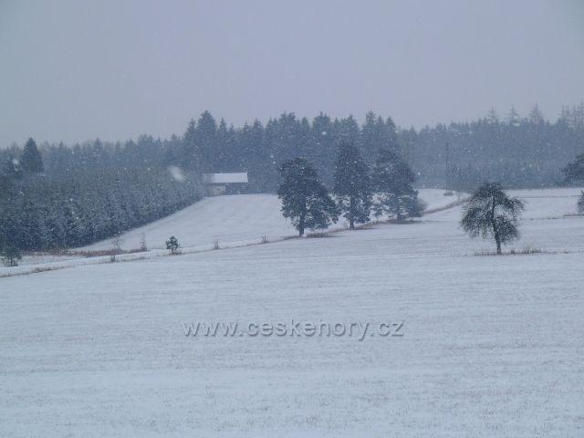 Žamberk - sněžení pod hájovnou v parku