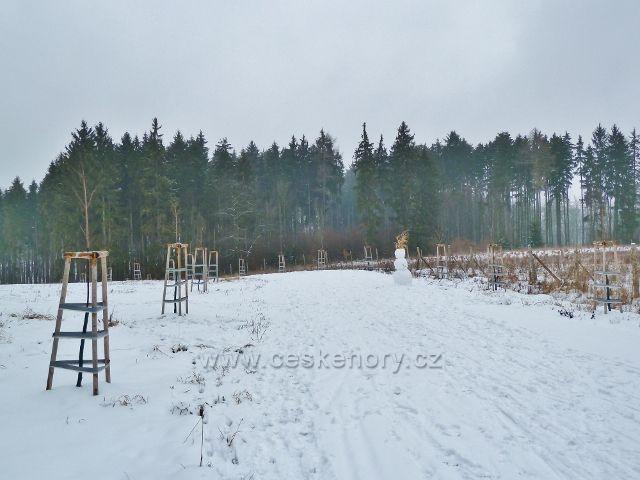 Žamberk - park, zimní alej k Lukavici