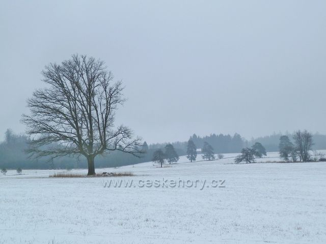 Žamberk - park, zima pod hájovnou