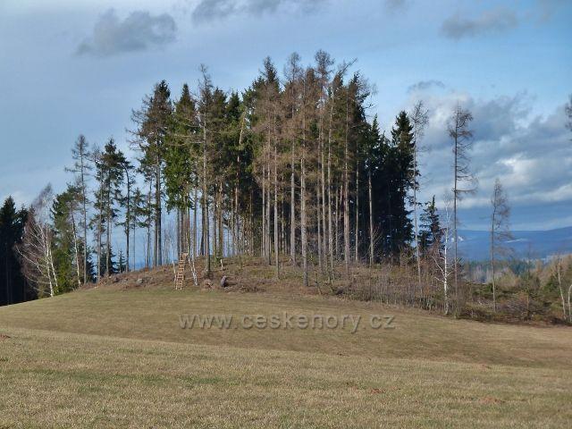 Nekoř - zalesněný vrcholek s posedem nad Markétiným údolím