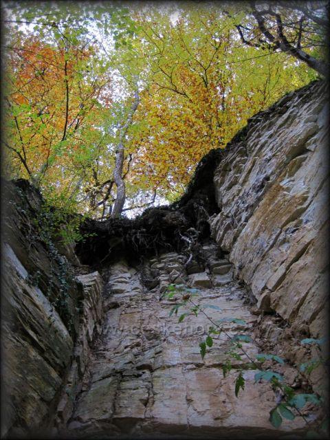 pod zámeckými schody - Nové Město n.M.