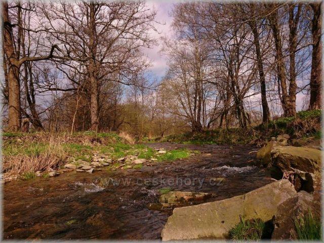 kolem řeky Moravy