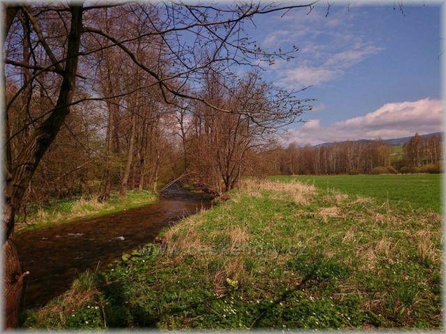 u řeky Moravy ..