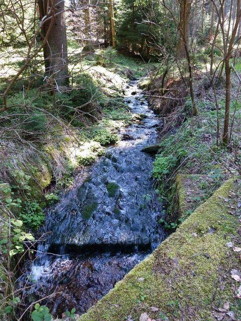 Těchonínský potok v zatáčce pod tvrzí Boudou