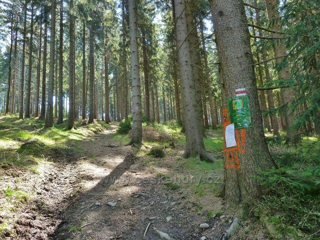 Zákaz vstupu do lesa mimo turistickou cestu po červené TZ na vrchol Suchého vrchu