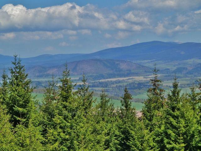 Pohled na polský vrch Urwista - 794 m.n.m. Vpravo na obzoru vykukuje vrchol Králického Sněžníku