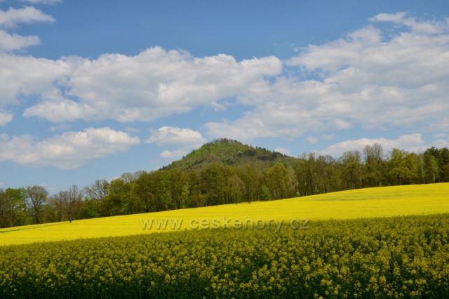 Skalický vrch