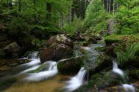 Jelení potok