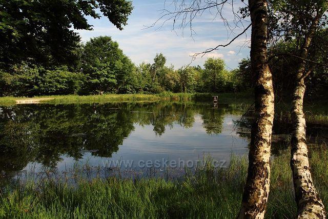 Rybník na Dlouhé Louce