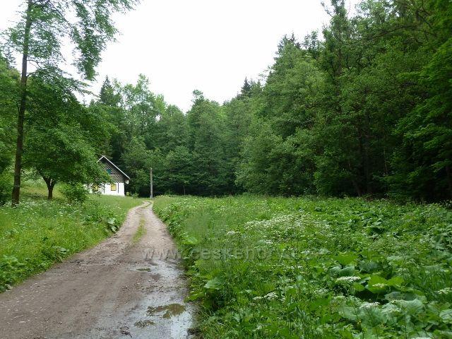 Hamernice - cesta údolím po modré TZ