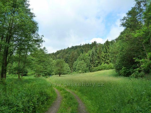 Hamernice - cesta po modré TZ hamernickým údolím