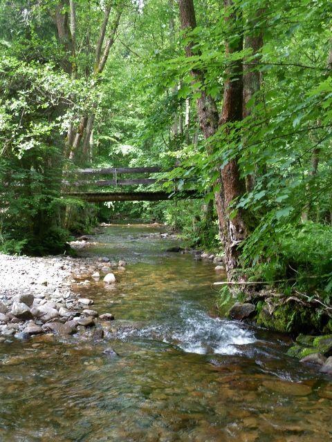 Hamernice - mostek přes Říčku před letním táborem České tábornické unie