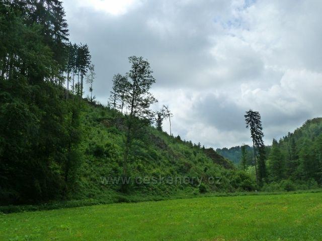 Hamernice - údolí se pod letním táborem začíná zužovat