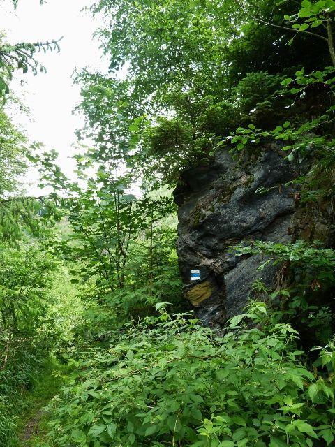 Hamernice - Jeden z mnoha skalních výhozů nad soutokem Říčky se Zdobnicí