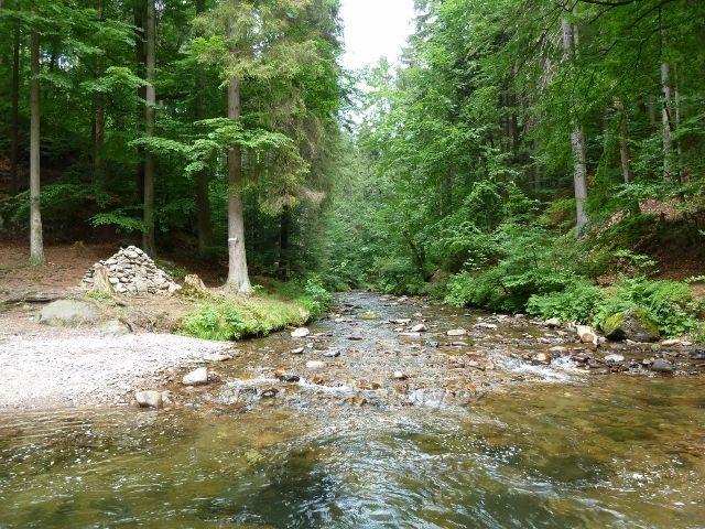 Hamernice - Zdobnice přitéká k soutoku s Říčkou skalnatým údolím