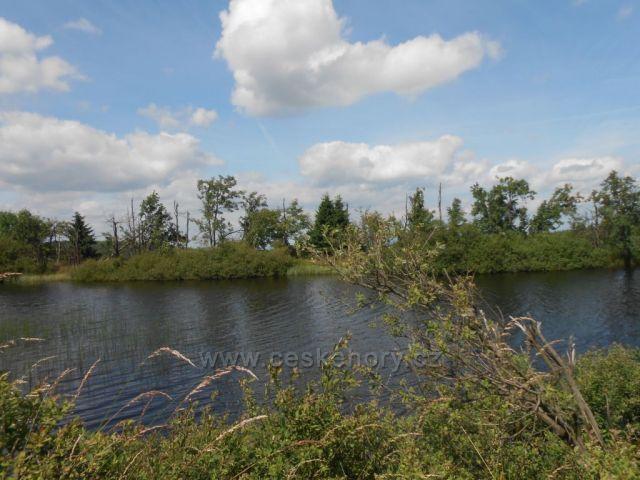 Cínovecký rybník