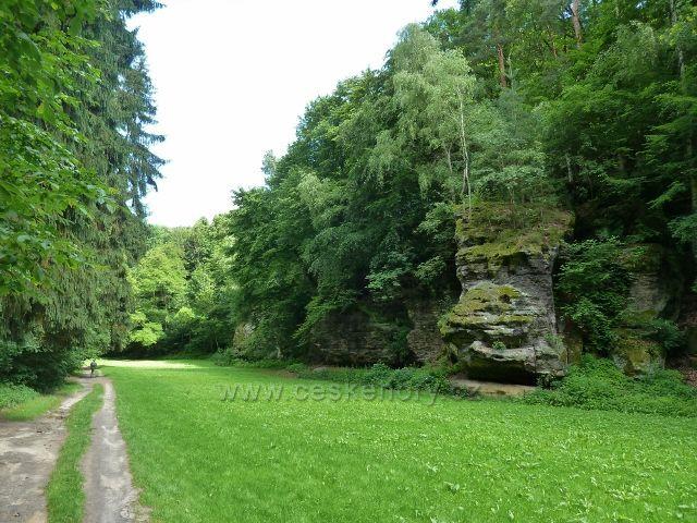 Lesopark Debř - údolím vede cesta po modré a zelené TZ