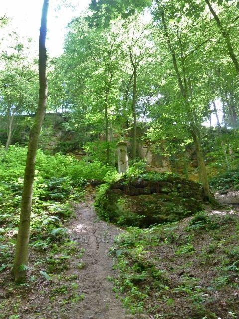 Lesopark Debř -miniatura zříceniny hradu Kokořín se jmenuje Kokořínek