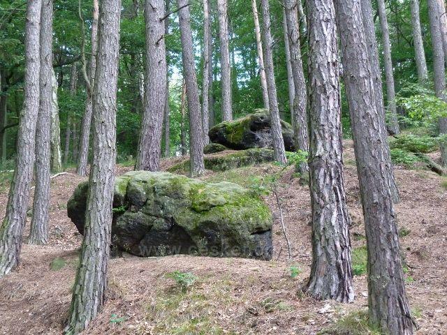 Kokořínsko - cesta po modré TZ k Pokličkám vede skalnatým terénem