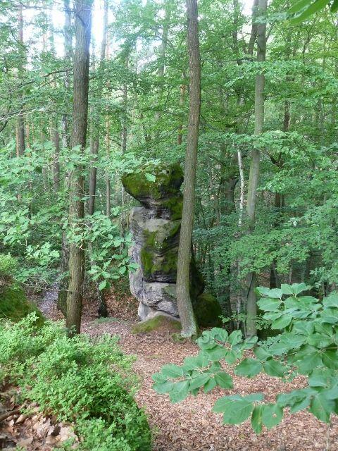 Kokořínsko - trasu k Pokličkám rovněž lemuje řada skalních útvarů