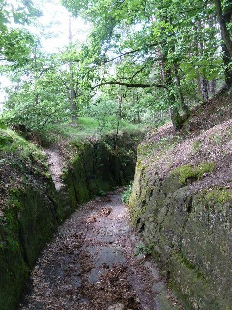 Kokořínsko - část cesty po modré TZ je vysekána ve skále a má šířku švédského válečného vozu