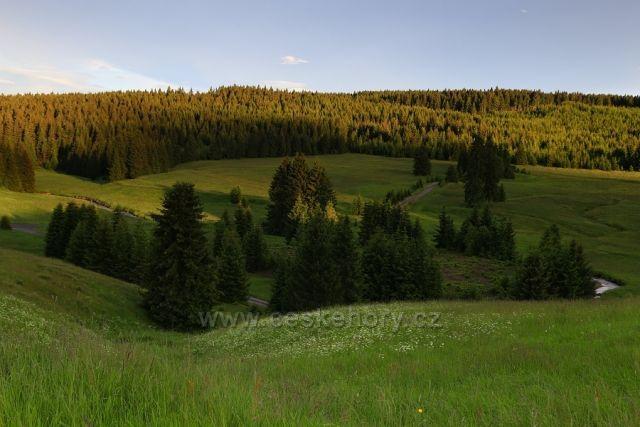Údolí potoka Černé