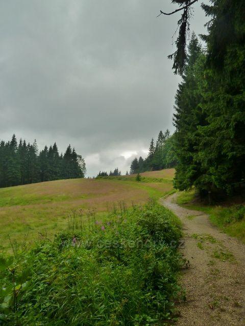 Visalaje - cesta na Gruň pokračuje po horní straně enklávy lesní louky