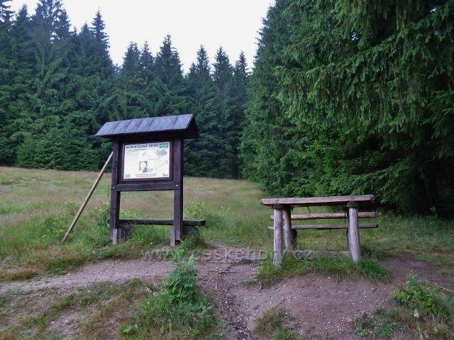 Visalaje - odpočívadlo a panel  NS Bílý kříž - Gruň na okraji lesní louky