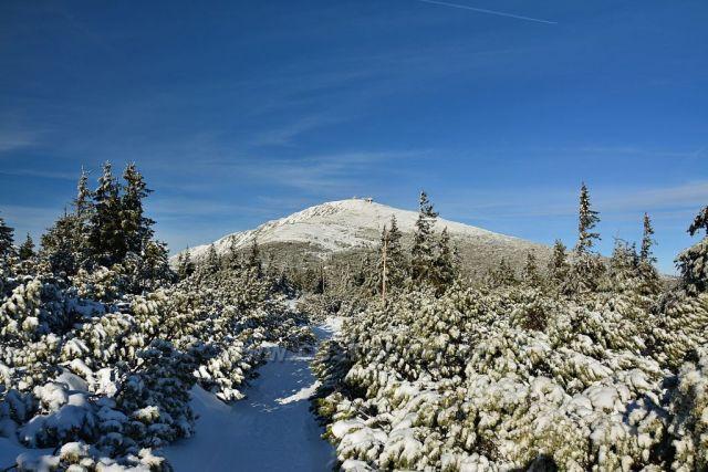 Sněžka od Růžové hory,Krkonoše